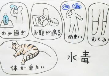 【水を飲み過ぎると水毒になる❗️】鍼灸ゆーせん/大阪府八尾市