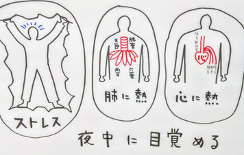 【不眠症と東洋医学②】/鍼灸ゆーせん/大阪府八尾市