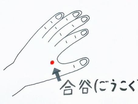 歯痛とツボ /鍼灸院/鍼灸ゆーせん/大阪府八尾市上尾町