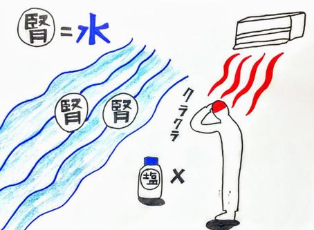 めまいと腎(東洋医学の)/ 鍼灸院/鍼灸ゆーせん/大阪府八尾市上尾町