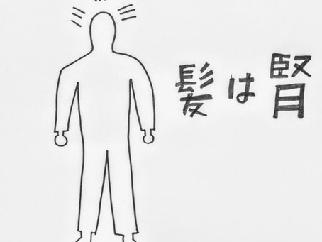 脱毛症と東洋医学② /鍼灸院/鍼灸ゆーせん/大阪府八尾市上尾町