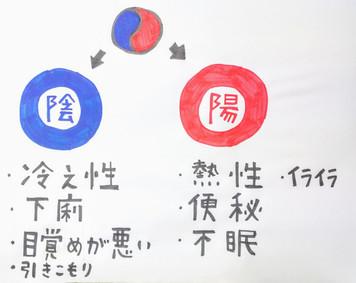 【陰陽について⑦】鍼灸ゆーせん/大阪府八尾市