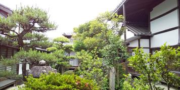 【日本最古の寺、奈良の飛鳥寺へ】/鍼灸ゆーせん/大阪府八尾市