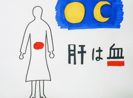 腰痛と東洋医学⑤ /鍼灸院/鍼灸ゆーせん/大阪府八尾市上尾町