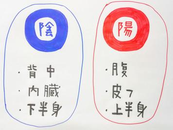 【陰陽について⑤】鍼灸ゆーせん/大阪府八尾市