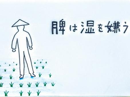 頭痛と東洋医学② /鍼灸院/鍼灸ゆーせん/大阪府八尾市上尾町