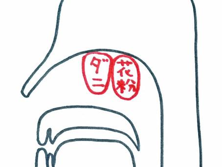 アレルギー性鼻炎について/鍼灸院/鍼灸ゆーせん/大阪府八尾市上尾町