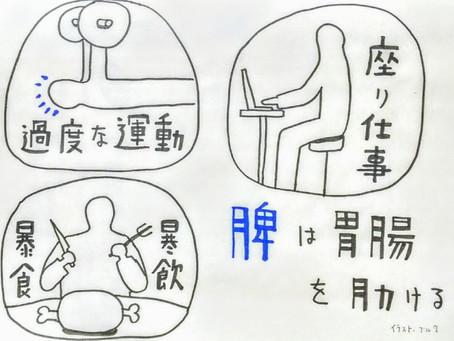 【肩こりと東洋医学③】鍼灸院/鍼灸ゆーせん/大阪府八尾市上尾町
