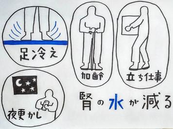 【肩こりと東洋医学⑥】/鍼灸院/鍼灸ゆーせん/大阪府八尾市上尾町