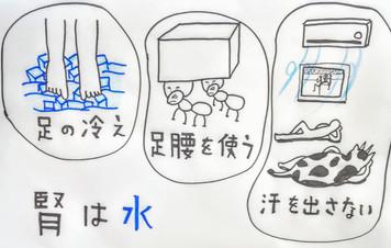 【関節の痛みと東洋医学③】鍼灸ゆーせん/大阪府八尾市