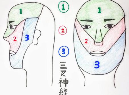 顔面痛(三叉神経痛)鍼灸院/鍼灸ゆーせん/大阪府八尾市上尾町