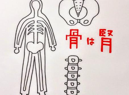 腰痛と東洋医学②/鍼灸院/鍼灸ゆーせん/大阪府八尾市上尾町