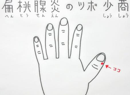 扁桃腺炎のツボ少商/大阪府八尾市/鍼灸ゆーせん