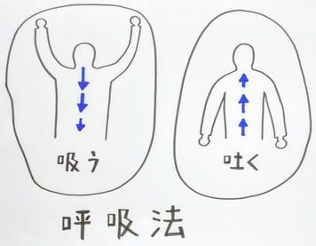 【呼吸法で心と身体を整えて自律神経の調節!】鍼灸ゆーせん/大阪府八尾市