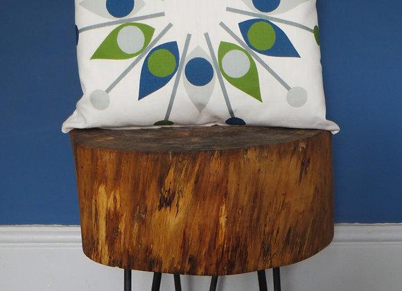 Shield Cushion