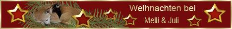 weihnachtsbanner-mel-.jpg