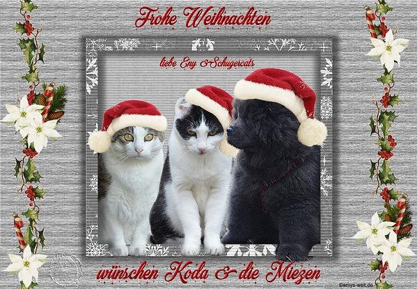 Weihnachten 2018 eny.jpg