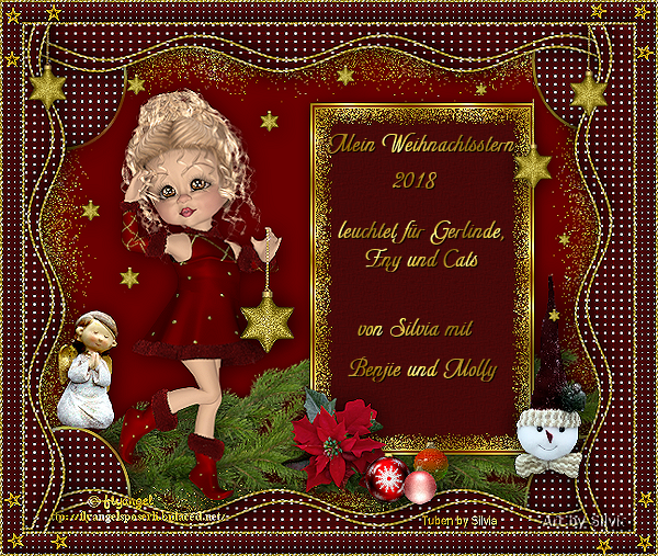 Weihnachtsstern 2018 Gerlinde.png