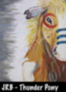 thunder pony.jpg