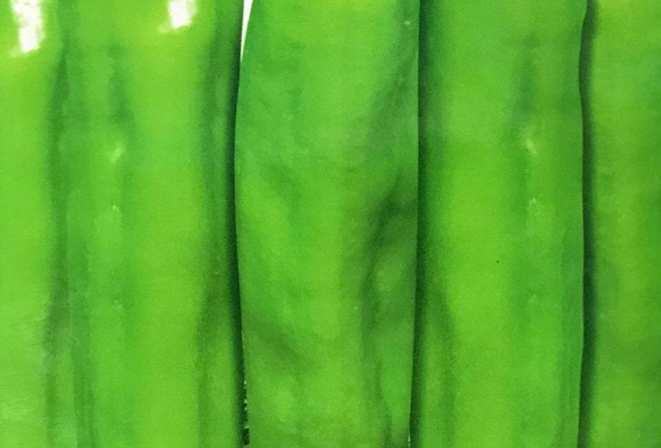 SC077 - Vegetable Seed  Pepper