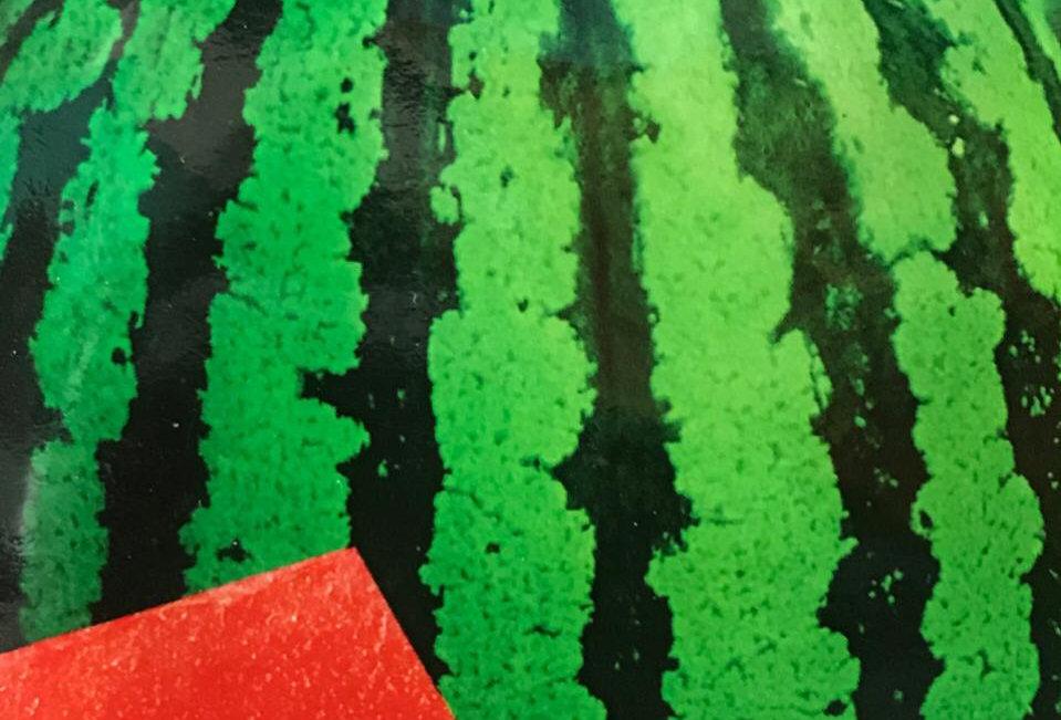 SB109 - Vegetable Seed     Watermelon
