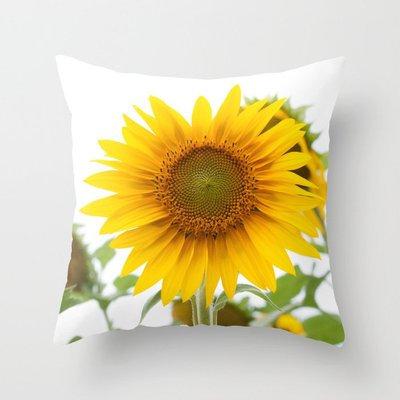 Cushion cover -#CHCV693