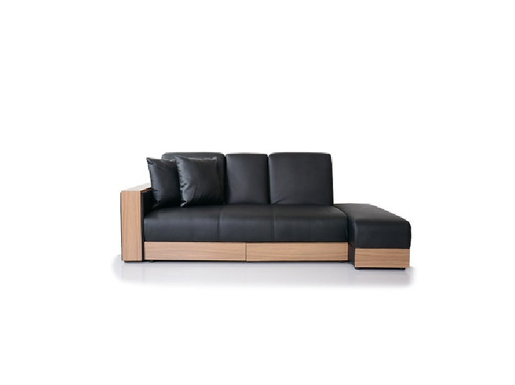 Sofa bed-SBC02