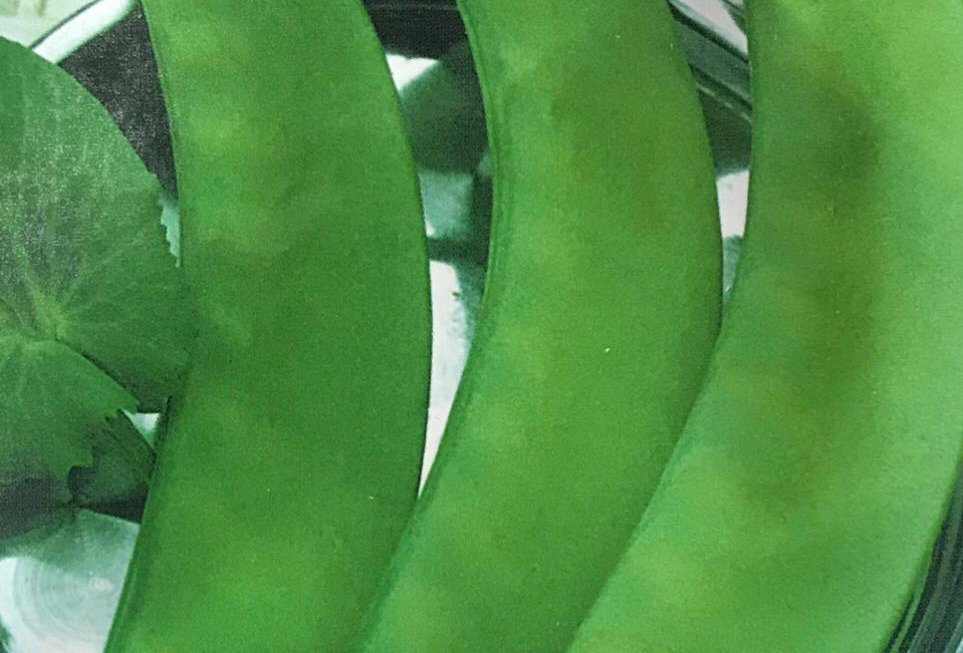 SC080 - Vegetable Seed  Garden Pea