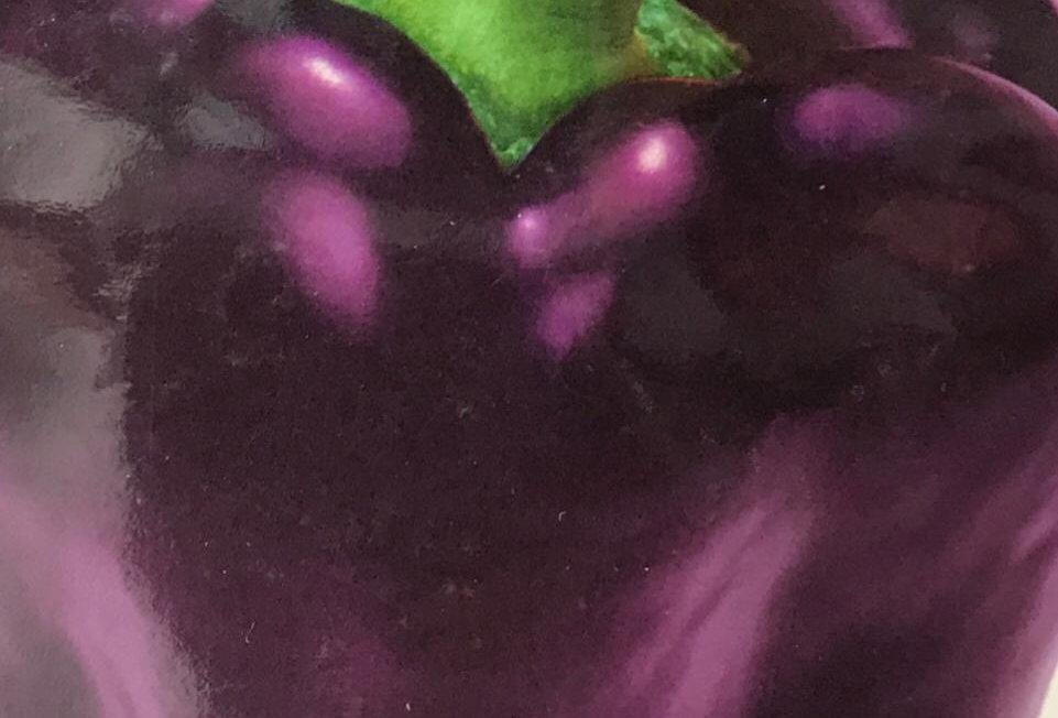 SC062 - Vegetable Seed  Sweet Pepper