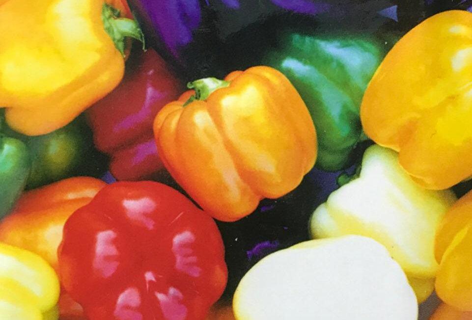 SC024 - Vegetable Seed   Sweet Pepper