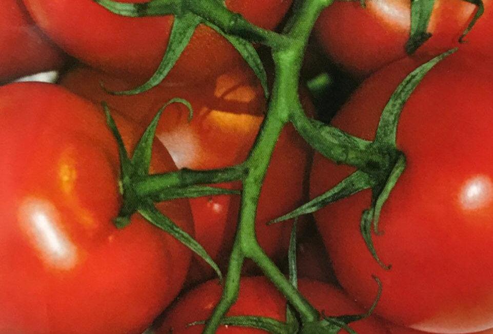 SC071 - Vegetable Seed  Tomato