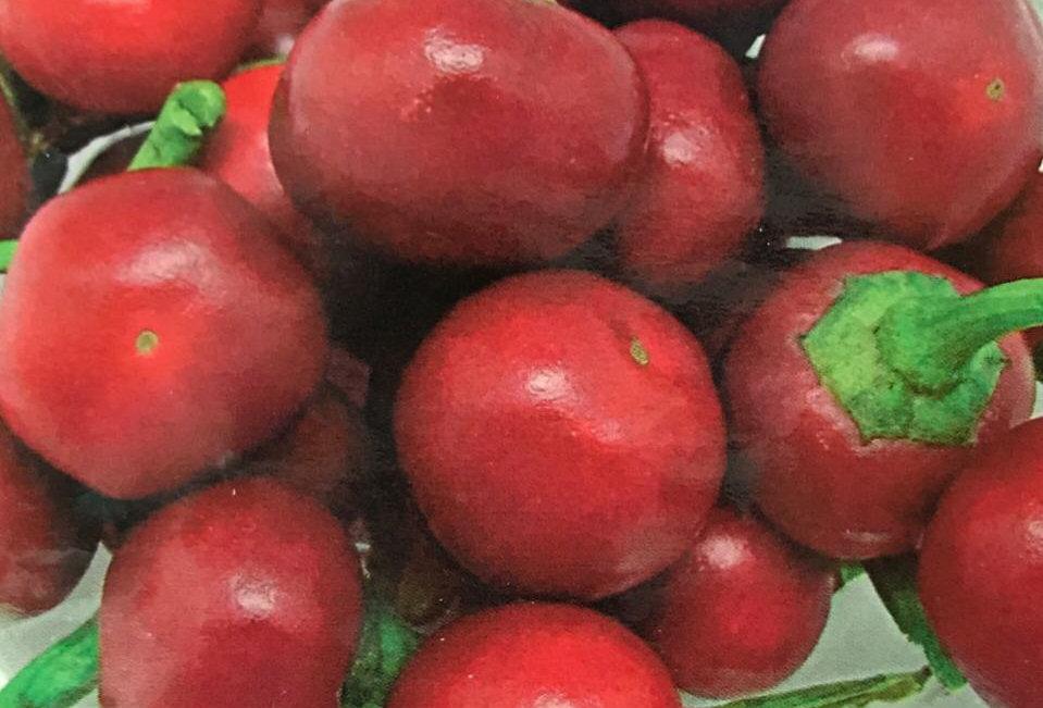 SB010 - Vegetable Seed    Ornamental Redpepper