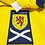 Thumbnail: Escócia 2010 Away M