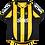 Thumbnail: Peñarol 2011 Home