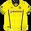 Thumbnail: Borussia Dortmund 2013 Home