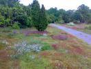 Rezerwat natury w Almö