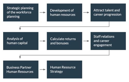 human resources shrm certification Consulting دورات الموارد البشرية الاستشارات الإدارية