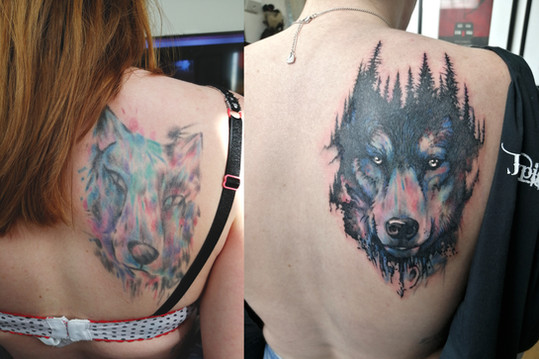 Wolf Cover Up