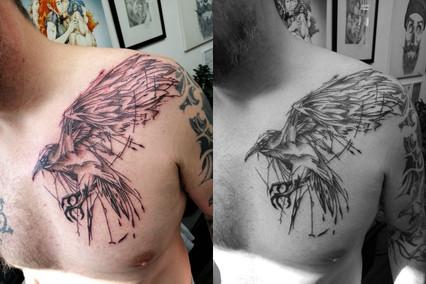 Scratch Raven