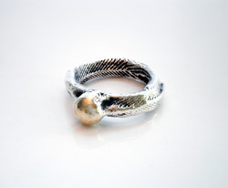 cuttlefish cast ring