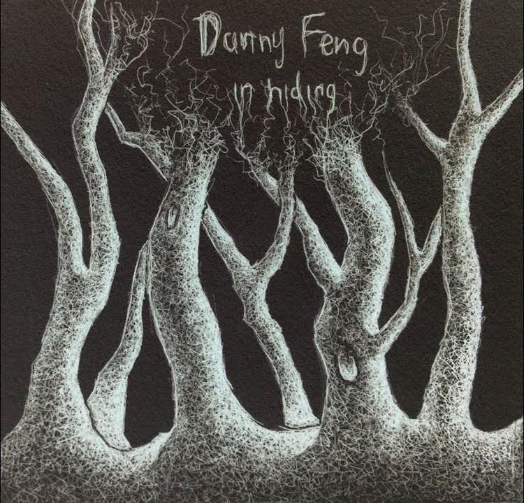 Danny Feng - In Hiding