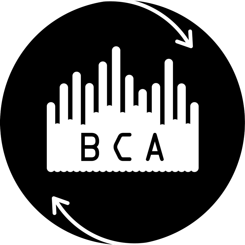 Logo: Boot Cycle Audio