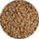 0299 Crisp Medium Crystal Malt.jpg