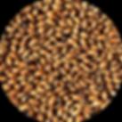 0279 Crisp Brown Malt.png