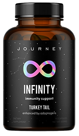 Journey design 18_clipped_rev_5.png