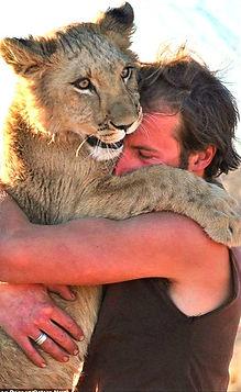LionessWhoHugsHoodies9_g_edited.jpg