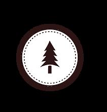 Ağaç Rozet Beyaz