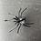 Thumbnail: Spinne mit Nanocachebehälter, magnetisch