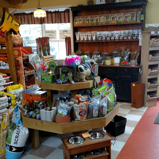 A store display covered in dog treats, including bully sticks