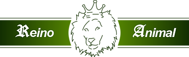 Reino Animal Logo.png